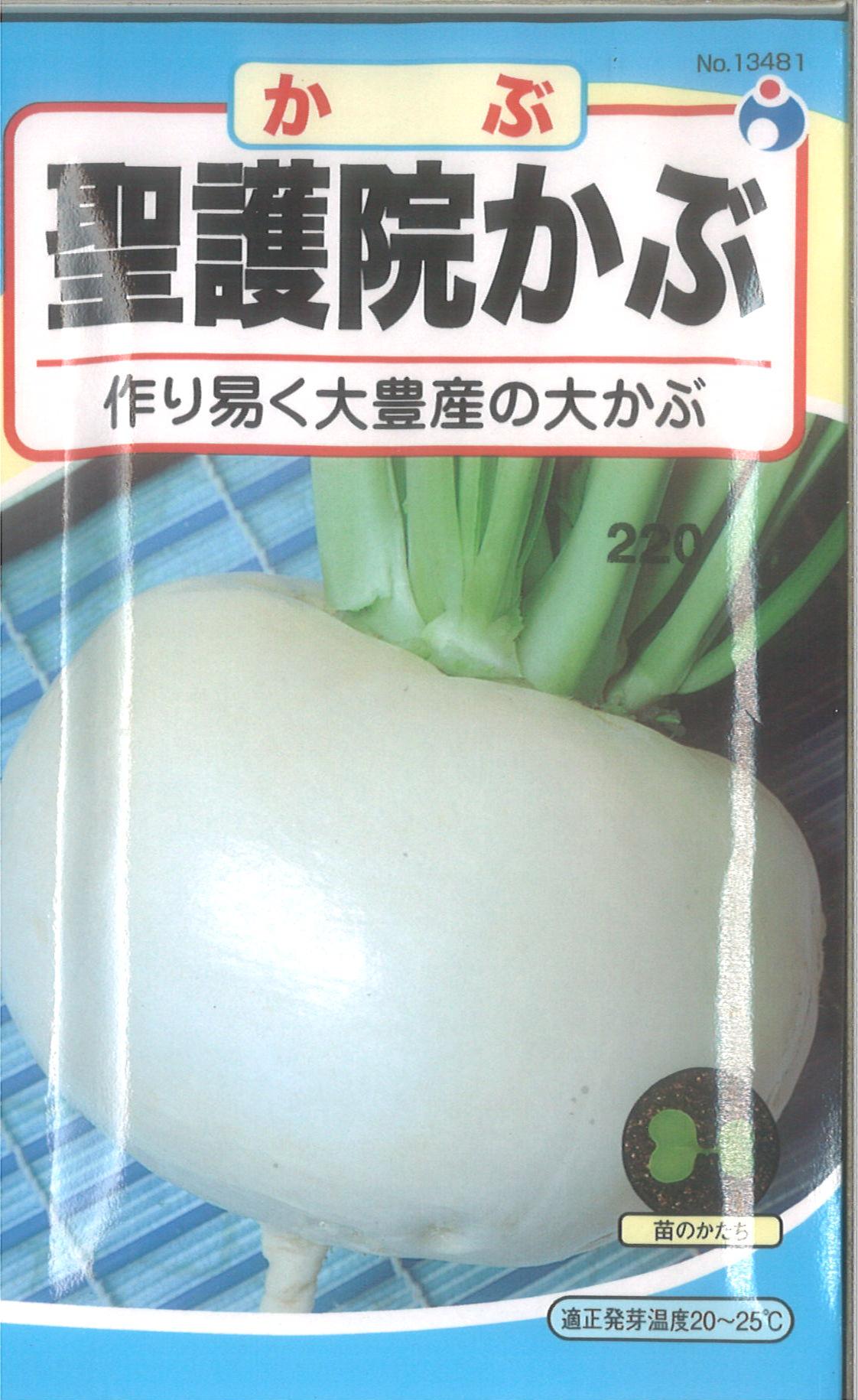 【代引不可】【5袋まで送料80円】 □ カブ 聖護院かぶ