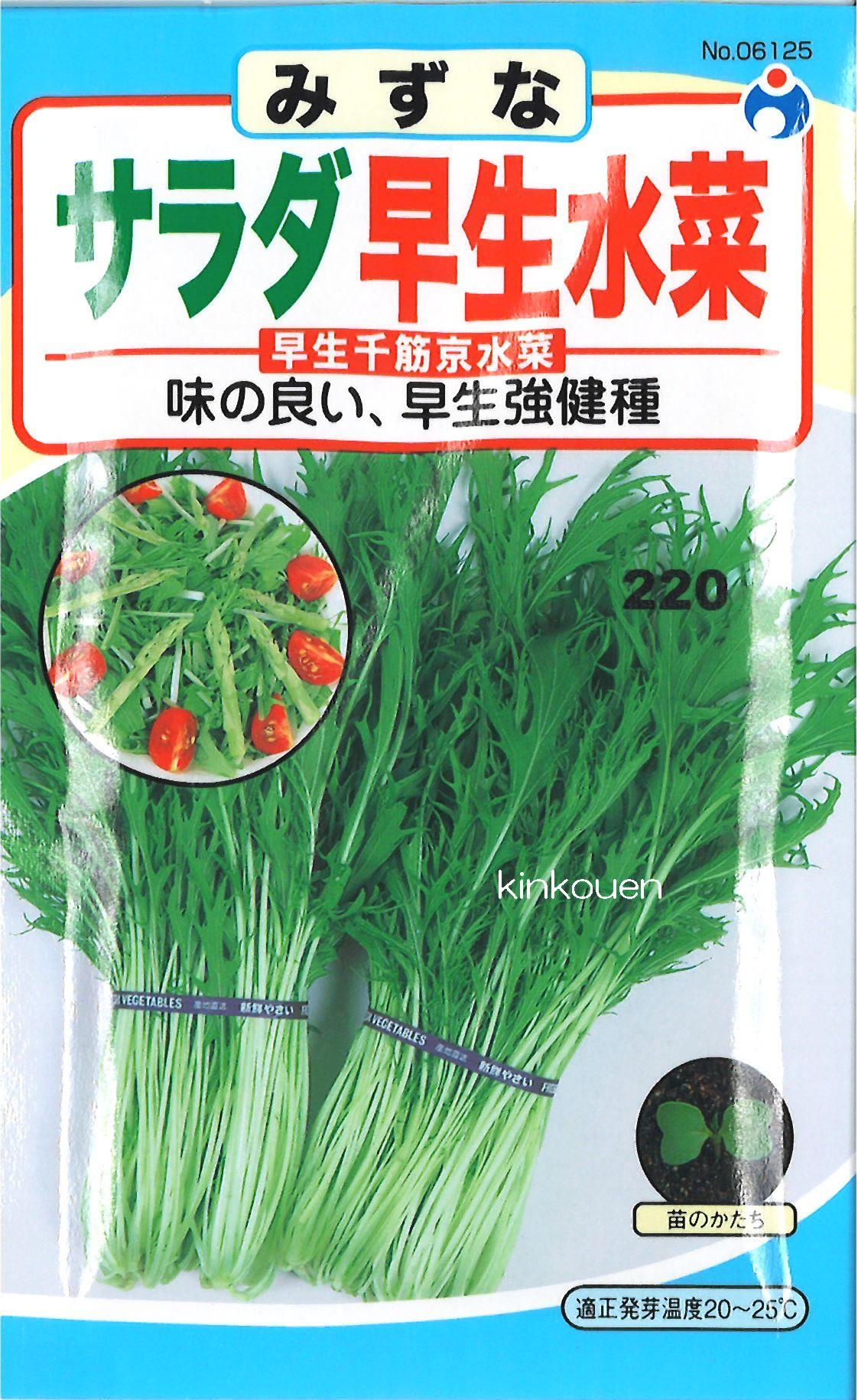 【代引不可】【5袋まで送料80円】□サラダ早生水菜