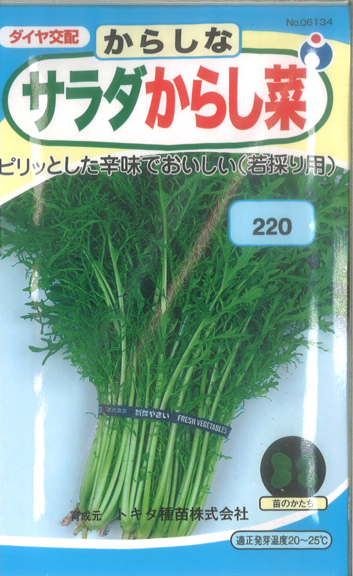 ≪代引不可≫≪5袋まで送料80円≫ □カラシナ サラダからし菜