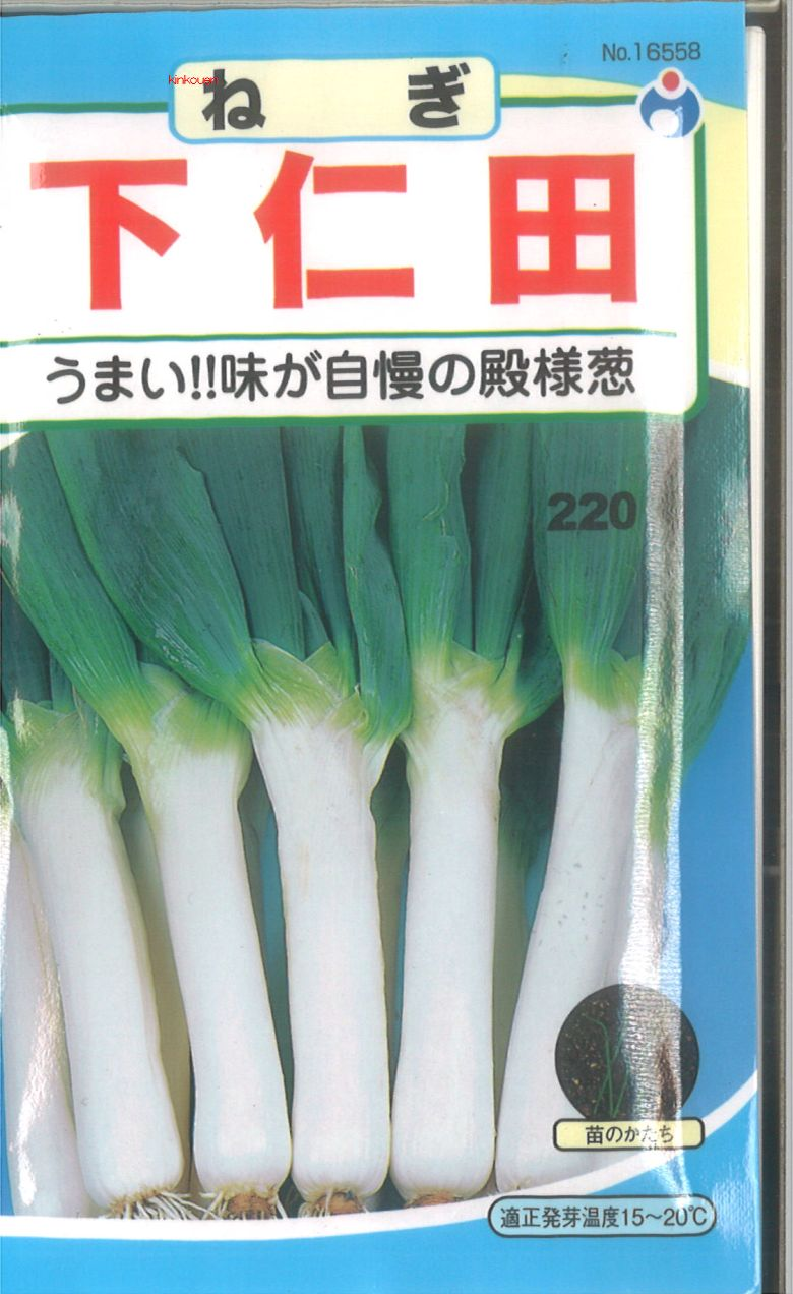 【代引不可】【5袋まで送料80円】 □ ネギ 下仁田ねぎ
