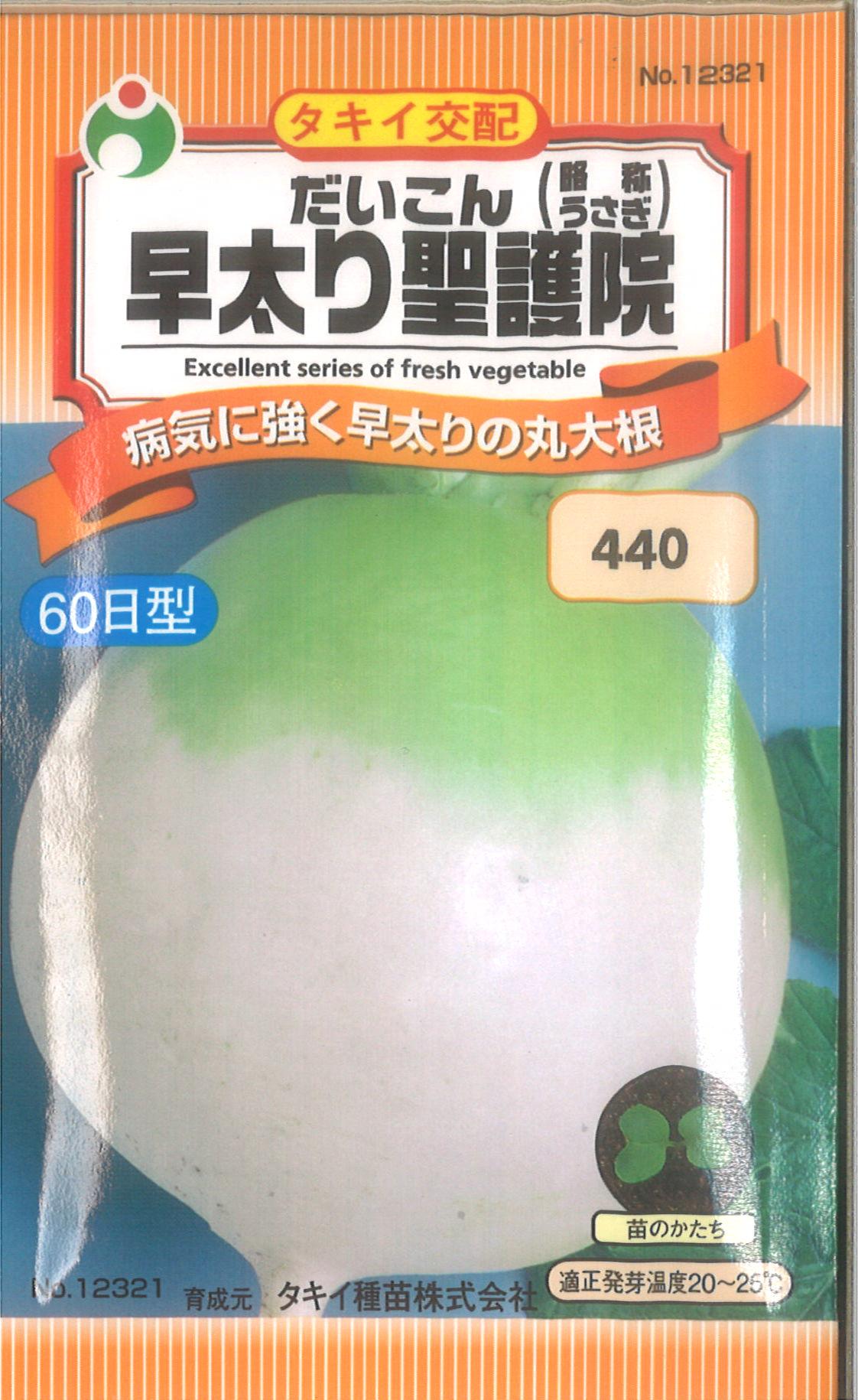 【代引不可】【5袋まで送料80円】 □ ダイコン 早太り聖護院 うさぎ