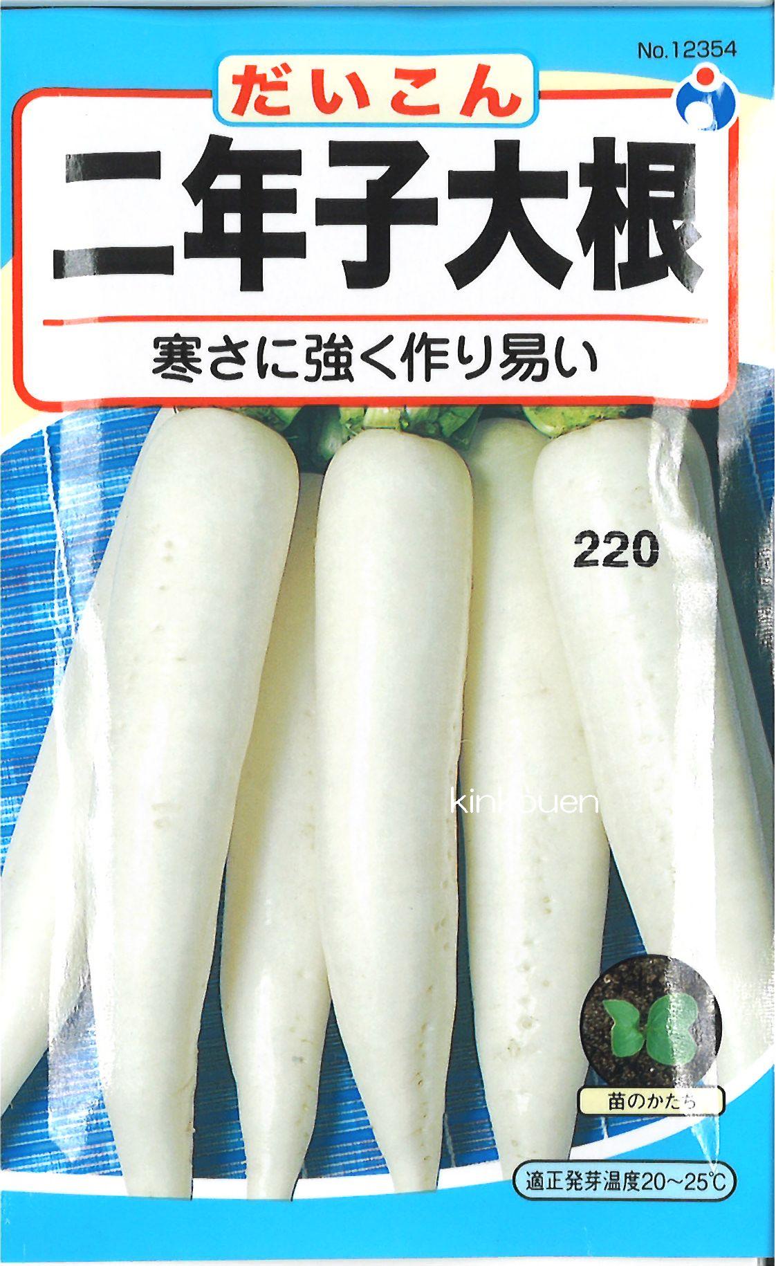【代引不可】【5袋まで送料80円】 □ ダイコン 二年子大根