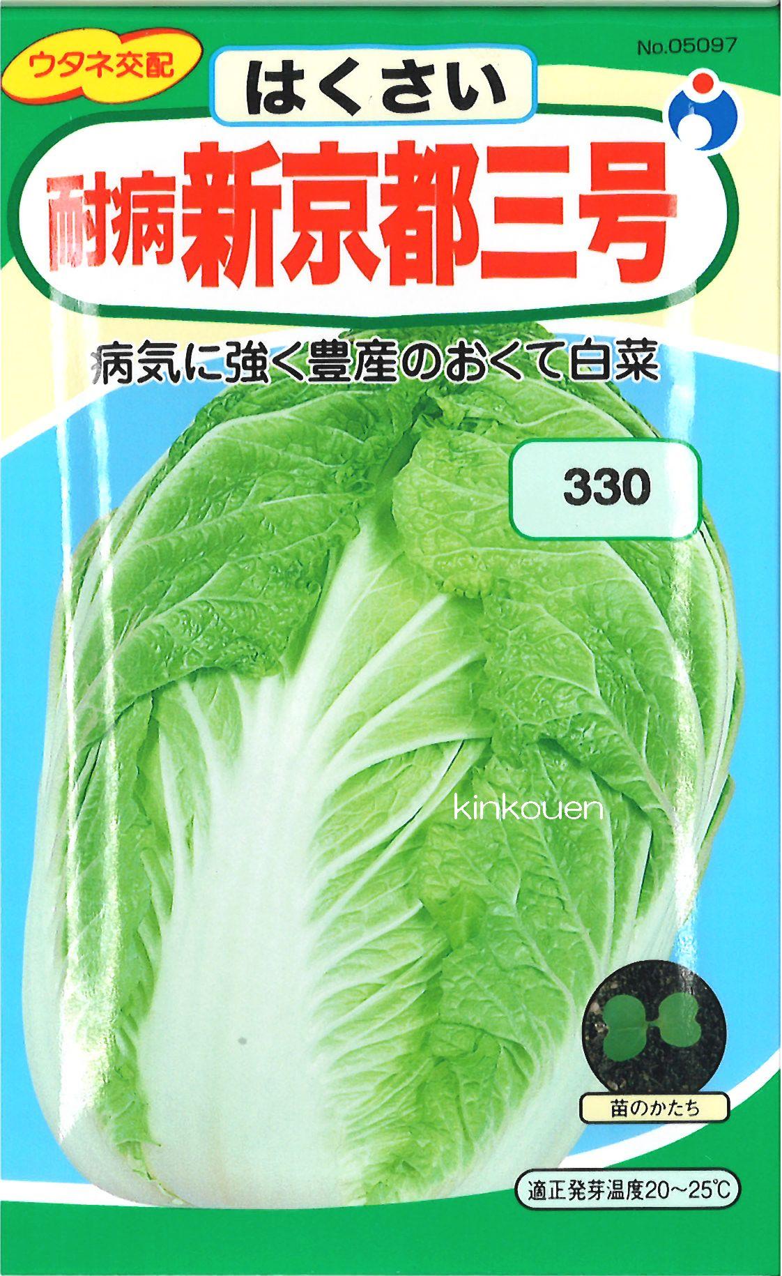 【代引不可】【5袋まで送料80円】 □ ハクサイ 耐病新京都三号