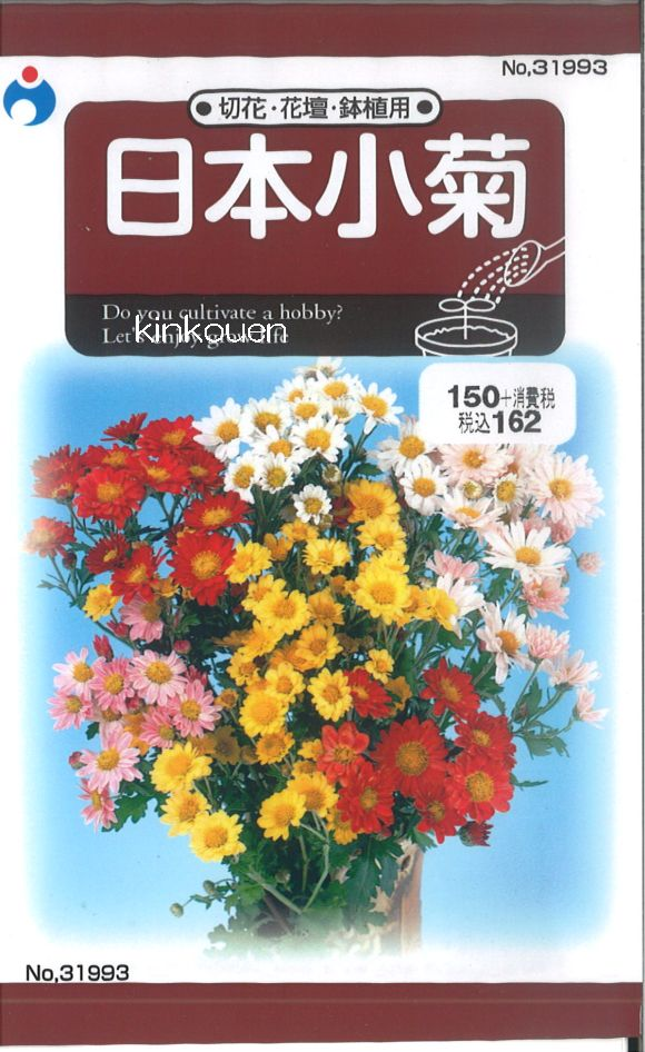 【代引不可】【5袋まで送料80円】□日本小菊