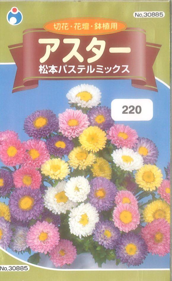≪代引不可≫≪5袋まで送料80円≫ □アスター松本パステルミックス