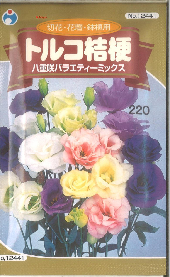 ≪代引不可≫≪5袋まで送料80円≫ □トルコ桔梗八重咲バラエティーミックス