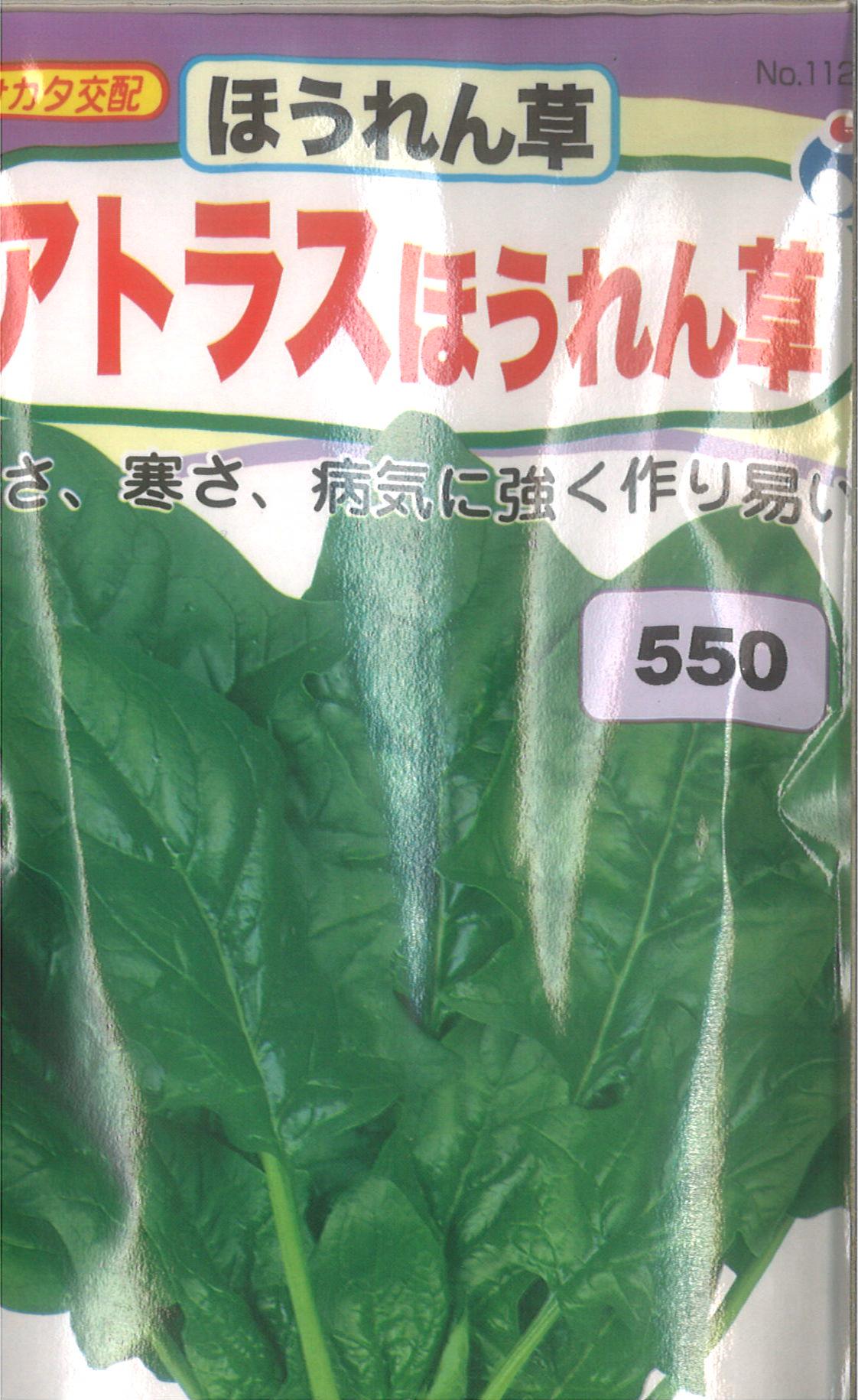 【代引不可】【5袋まで送料80円】□アトラスほうれん草 LL