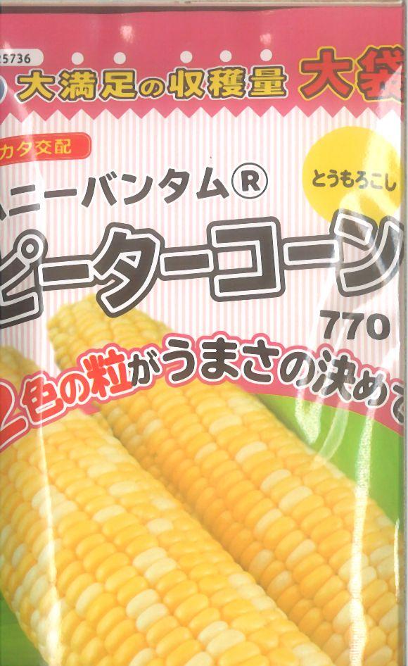 ≪代引不可≫≪5袋まで送料80円≫ □トウモロコシ中生ピーターコーンLL