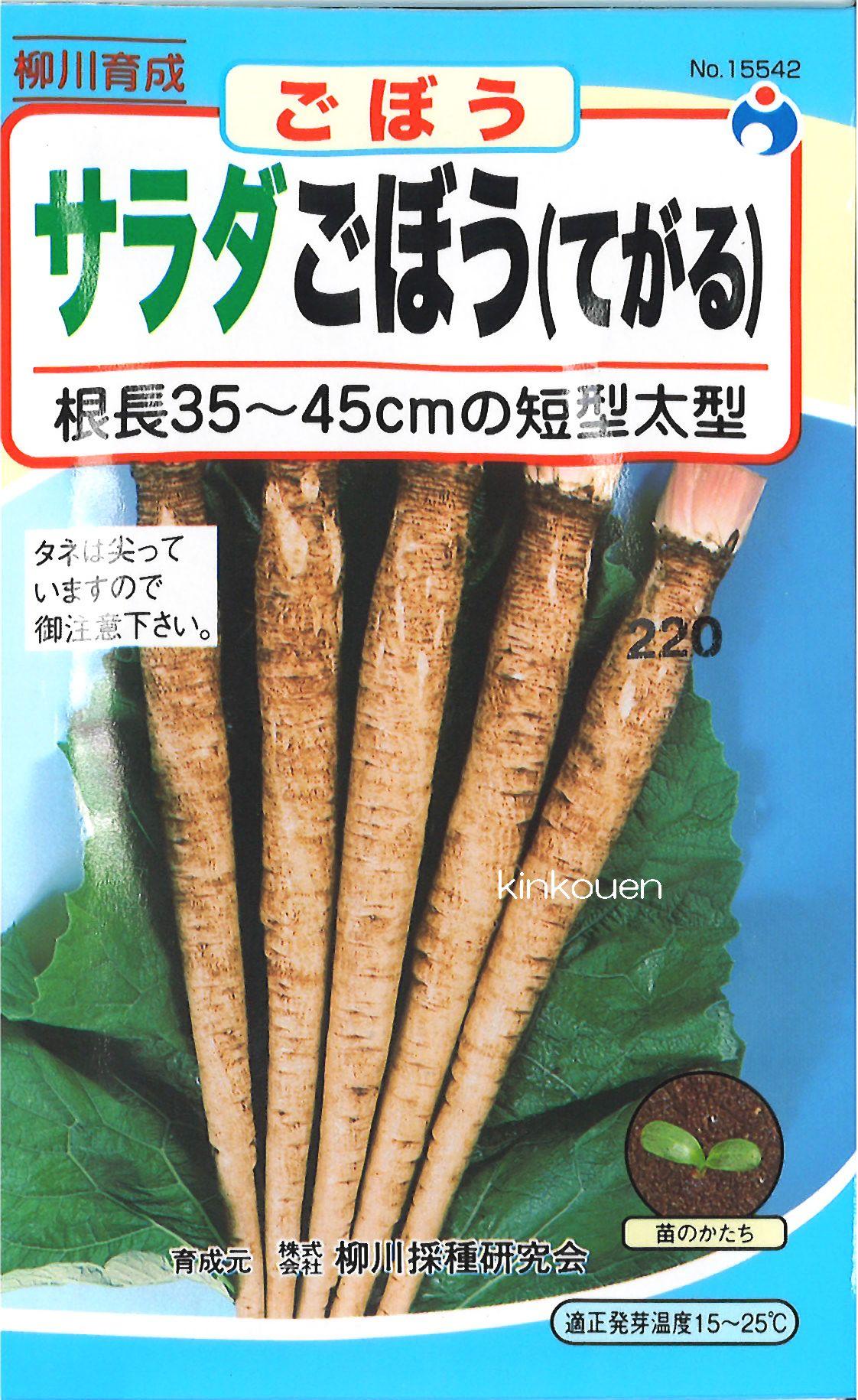 【代引不可】【5袋まで送料80円】□サラダごぼう