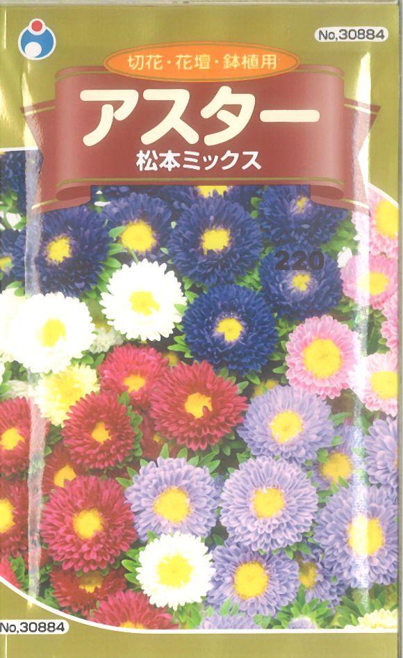 ≪代引不可≫≪5袋まで送料80円≫ □アスター松本ミックス