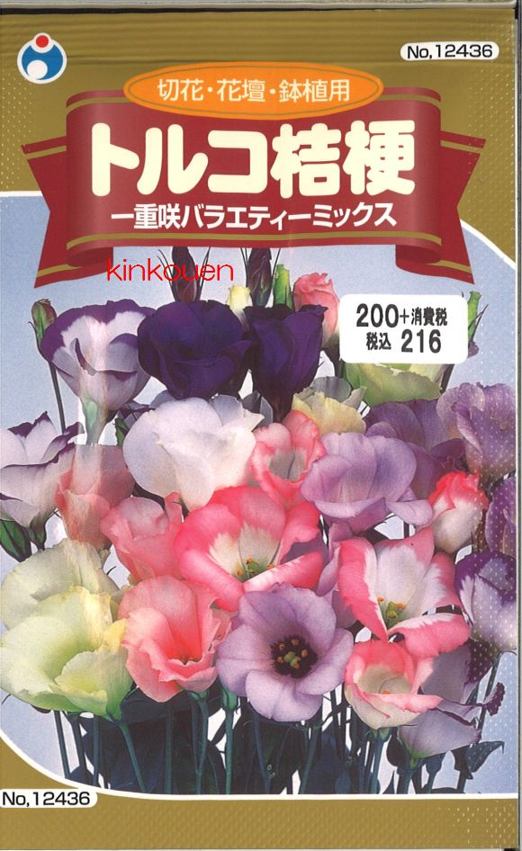≪代引不可≫≪5袋まで送料80円≫ □トルコ桔梗一重咲バラエティーミックス