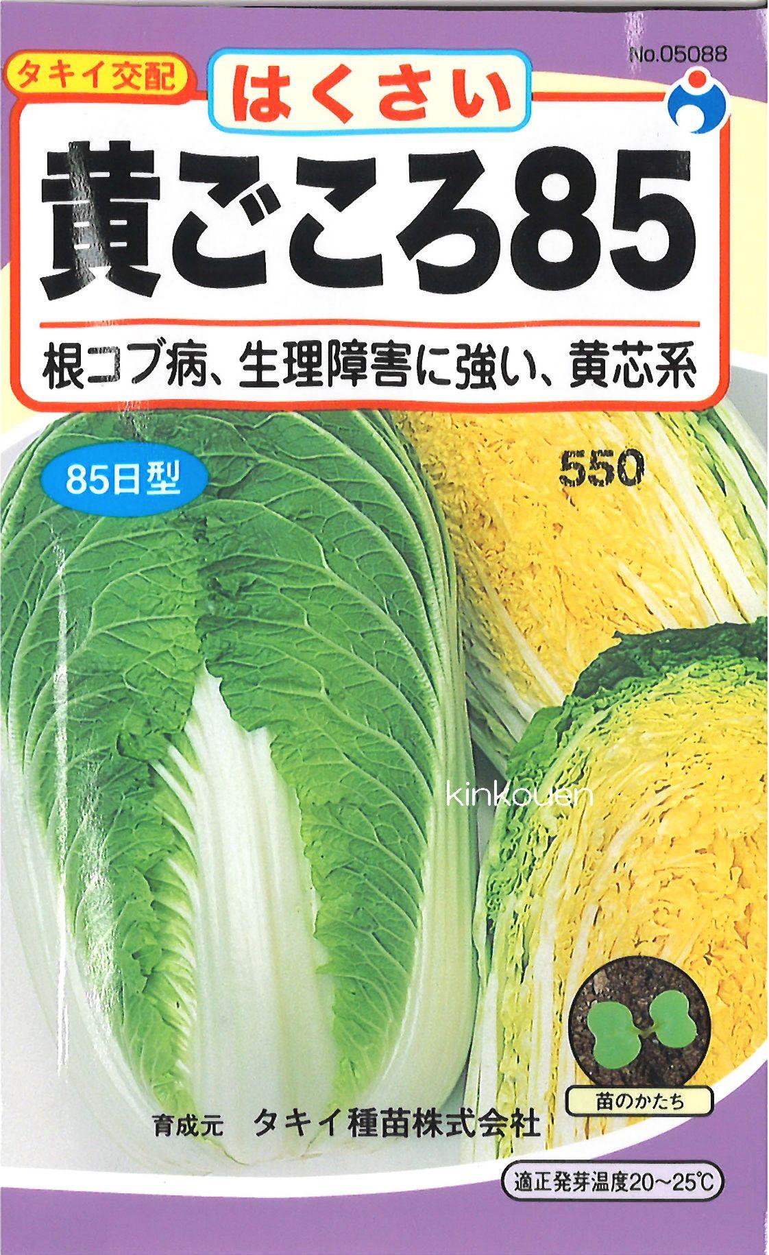 【代引不可】【5袋まで送料80円】□黄ごころ85はくさい