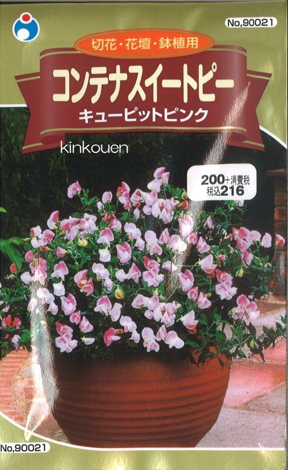 【代引不可】【5袋まで送料80円】 □ コンテナスイートピーキューピットピンク