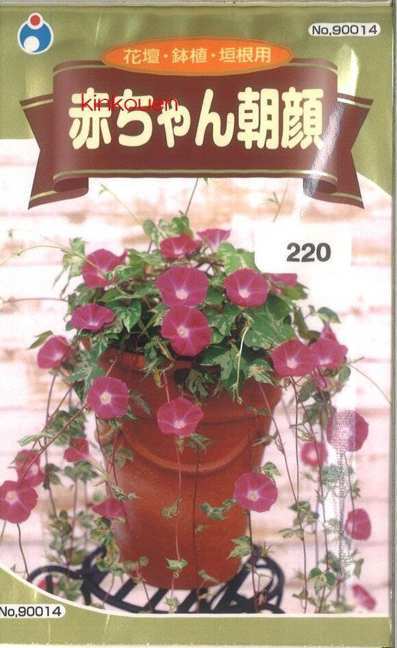 ≪代引不可≫≪5袋まで送料80円≫ □アサガオ赤ちゃん朝顔