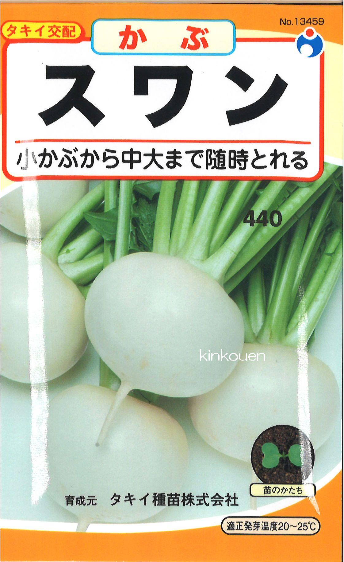 【代引不可】【5袋まで送料80円】 □ カブ スワンかぶ