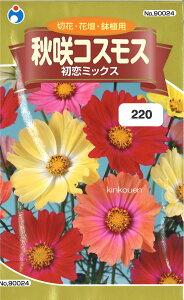 2-3-7【代引不可】【送料5袋まで80円】 □秋咲コスモス 初恋ミックス ■ seed たね tane 種 種子 花の種