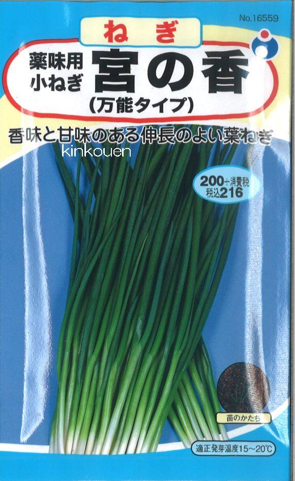 【代引不可】【5袋まで送料80円】 □ ネギ 薬味用小ねぎ 宮の香 万能タイプ