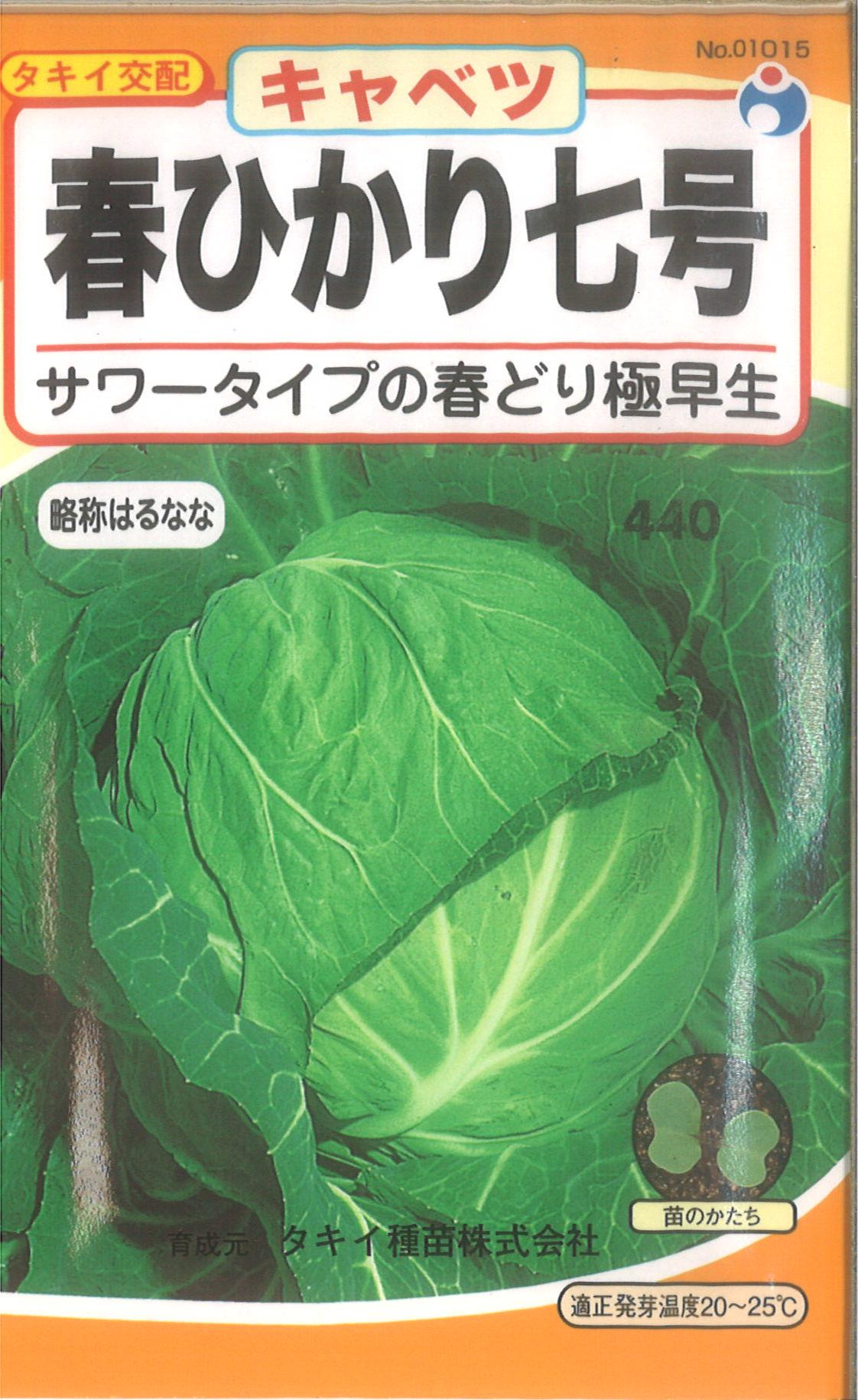 【代引不可】【5袋まで送料80円】 □ キャベツ 春ひかり七号