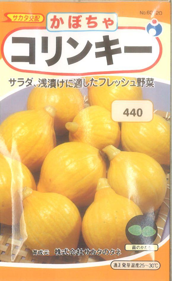≪代引不可≫≪5袋まで送料80円≫ □カボチャコリンキー