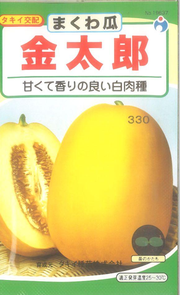 ≪代引不可≫≪5袋まで送料80円≫ □まくわ瓜金太郎