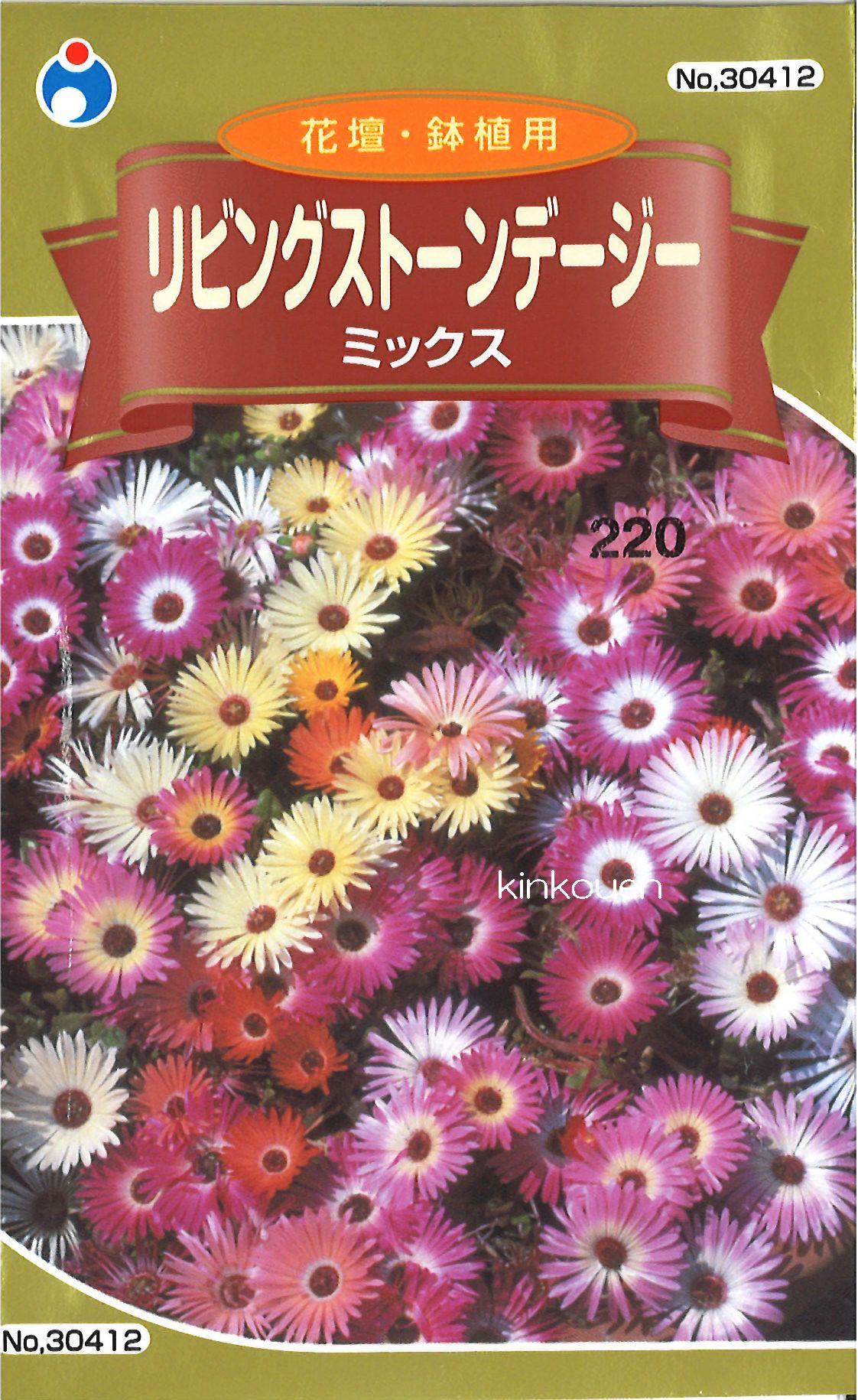 【代引不可】【5袋まで送料80円】 □ リビングストーンデージー ミックス
