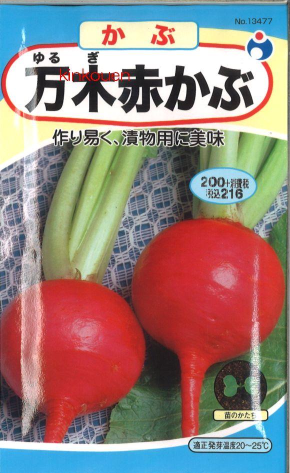 【代引不可】【5袋まで送料80円】□万木赤かぶ