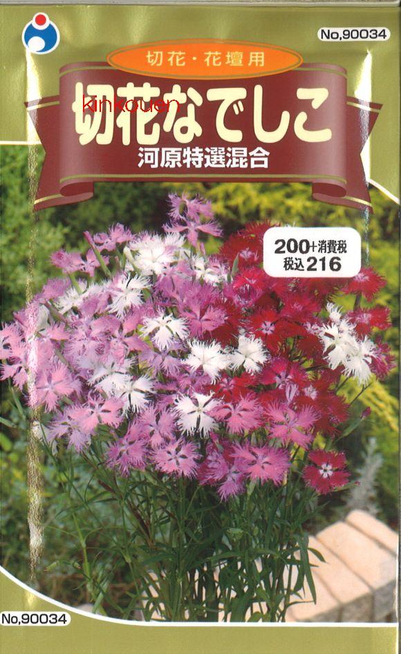 【代引不可】【5袋まで送料80円】□切花なでしこ 河原特選混合