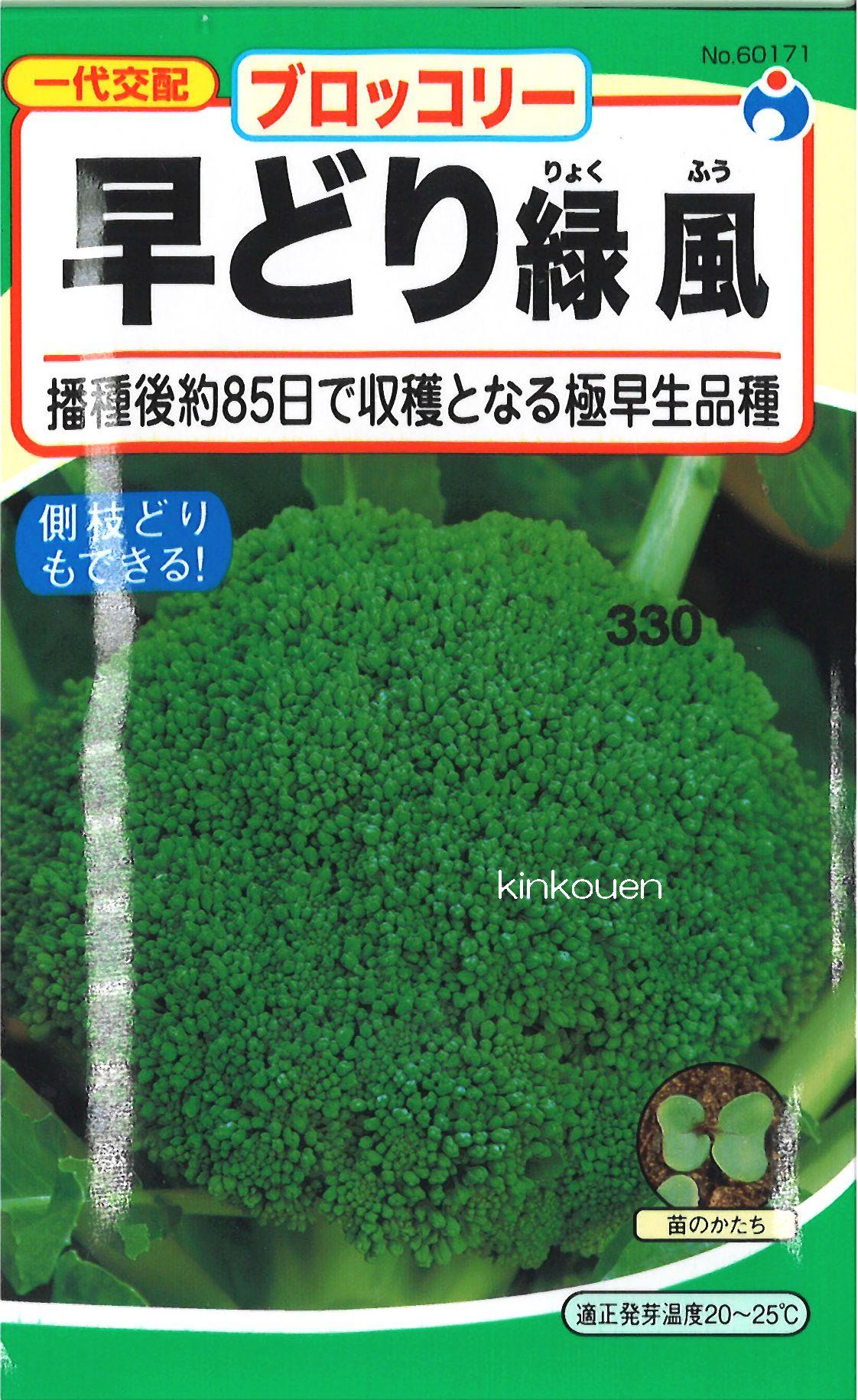 【代引不可】【5袋まで送料80円】□早どり緑風ブロッコリー