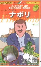 【代引不可】【送料5袋まで80円】 □ ナポリ フローレンスフェンネル