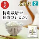 【新米】金芽米 特別栽培米2kg【送料込】【令和2年産】※BG無洗米・LPS(リポポリサッカライド)が豊富で免疫力アップ(きんめまい・お米)