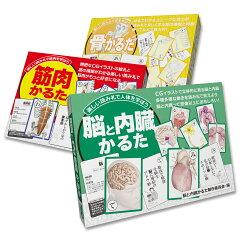 筋肉&骨&脳と内臓解剖学かるた3点セット