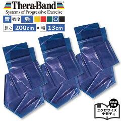青「セラバンド(Theraband)ブルー強」幅:約13cm「室内エクササイズ」特製小冊子付エクササイズ