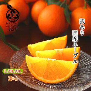 国産 訳あり ネーブル オレンジ 送料無料3kg L/2Lいずれかのサイズまたはサイズ混合樹上熟成 木熟 完熟 オレンジ紀州 和歌山 紀南 田辺 みかん ミカン フルーツ 果物糖度 高糖度 甘い 家庭用 3k