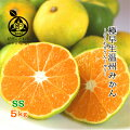 【40代女性】季節のフルーツをお礼ギフトに!おいしい早生みかんのおすすめはありますか?