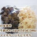 ハナビラタケ マイタケ 詰め合わせ(500g) コリコリ食感 きのこ 生鮮 鮮度抜群 栽培直送 はなびらたけ 花びら茸 舞茸 …