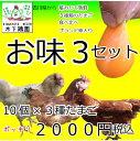 【お味3セット】お味見どうぞ!3種のたまご!緑のたまご入り!コーチンも!計30個・鮮度保証!北海道・沖縄別途