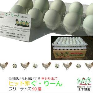 アローカナ鶏ヒット卵ぐ・りーん90個【みどり色卵】贈り物にも新鮮たまごを