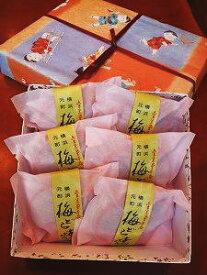 【横浜みやげ】【梅どら焼き 6個セット】【送料無料】