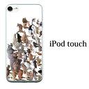 iPod touch 7 6 5 ケース アニマルズ 動物 第7世代 アイポッドタッチ7 第6世代 おしゃれ かわいい ipodtouch7 アイポ…