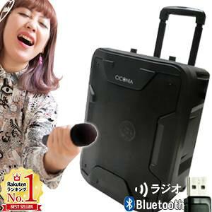 スピーカー ポータブルスピーカー bluetooth ワイヤレスマイク リモコン付き マイク コードレス 音楽再生 録音 拡声器 APスピーカー カラオケ ライブ 充電式 AC電源 チコニア TY-1800 送料無料