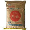 天塩 20Kg(業務用) ※2袋目から別途重量での追加料金かかります