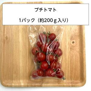 プチトマト フルーツ 糖度 数量限定 売り切れ次第終了 トマト 甘い 濃い 産地直送 人気商品 人気 兵庫県産 200g パック