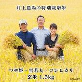 庄内米井上農場の特別栽培米【つや姫】【雪若丸】【コシヒカリ】玄米1.5kg