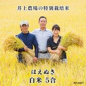 庄内米山形県鶴岡市井上農場の特別栽培米【はえぬき】白米5合