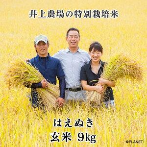 庄内米 山形県鶴岡市 井上農場の特別栽培米【はえぬき】玄米 9kg