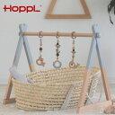 HOPPL ホップル ジムセット[0才〜 メリー ベビー 赤ちゃん 吊り下げ 吊り下げ式 おもちゃ 男の子 女の子 子供玩具 乳…