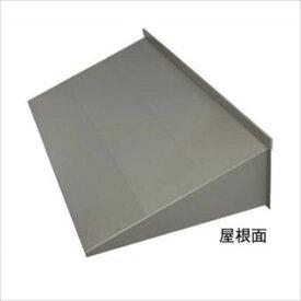 岩井工業所 アプローチ 本体920 ガルバリウム鋼板製 920×1950 『ひさし』