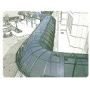 三菱ケミカル ポリカ板 ステラ 縦100〜910×横2001〜3000 厚み2(単位はmm) 『カーポート・テラスの屋根の修理…