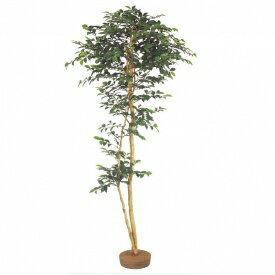 『人工植栽』 タカショー グリーンデコ和風 サザンカ 鉢無 1.8m GD-135