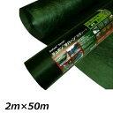 エントリーでP5倍! グリーンフィールド ザバーン防草シート136 スタンダードタイプ/厚さ0.4mm 2m×50m XA-136G2.0 グリーン